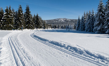 Skiing trail